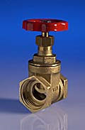 25mm Gate valve Female to Female
