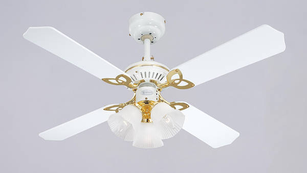 42 Quot Princess Trio Ceiling Fan White Cane With Lights