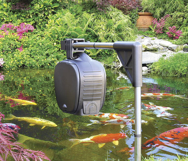 Hozelock Automatic Fish Food Feeder