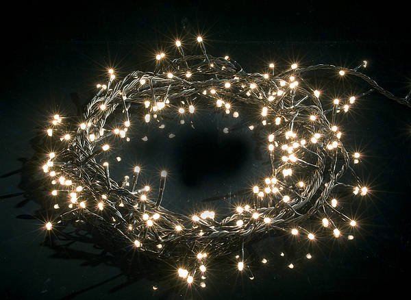 192 warm white twinkle christmas lights heavy duty for White twinkle christmas lights