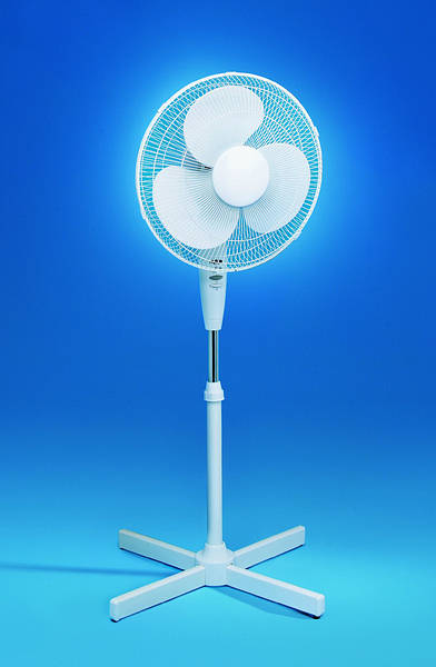 16 Inch Pedestal Fan 3 Speed White