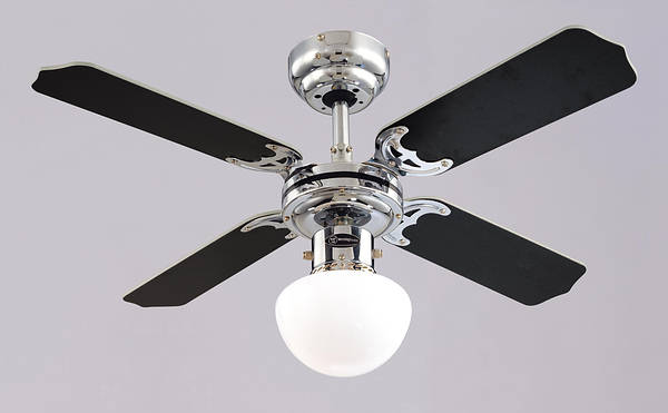 36 Inch Ceiling Fans