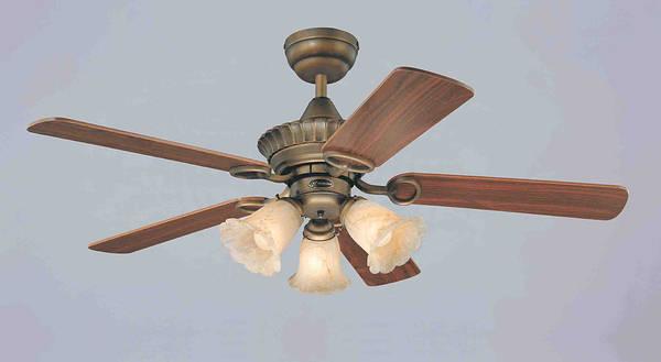 42 Inch Marigold Ceiling Fan